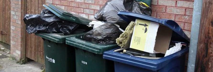 ugly bins