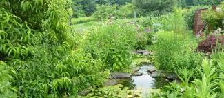 eco friendly garden