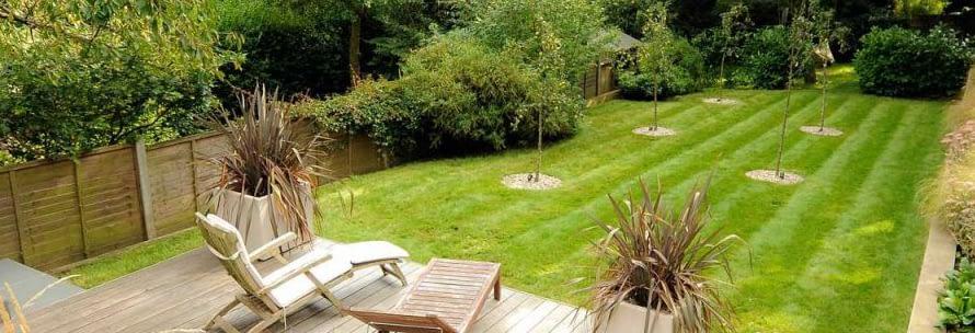 Decluttering garden tips